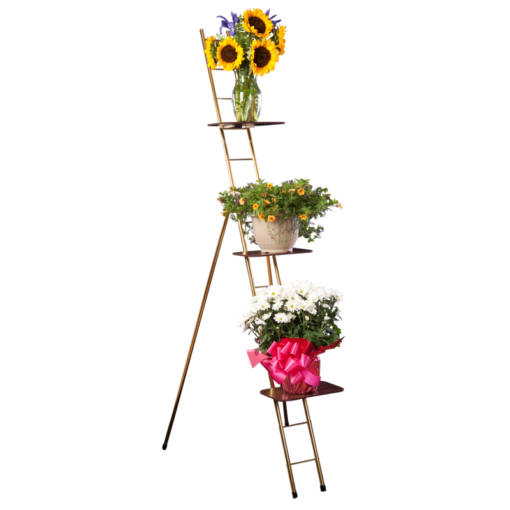 funeral ladder rack
